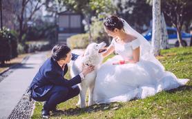 总监三机位婚礼摄影(毛毛虫带队拍摄)