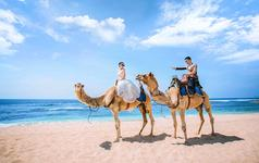 巴厘岛【轻奢人气款】教堂♥骆驼+赠送2晚四星酒店