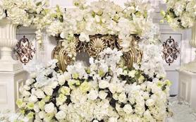 《白玫瑰之吻》白玫瑰圣洁庄严的爱情世界观