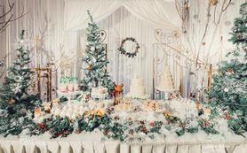 梦时光经典套餐——《圣诞之吻》婚礼设计策划费