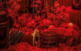 大伟婚礼——奥利加尔《 Love》