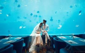 克洛伊【天堂森林公园+海底餐厅】预定减3000