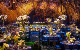 蓝夜幽幽----梓塘婚礼