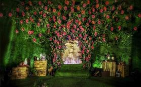 【真品婚礼】  院里蔷薇