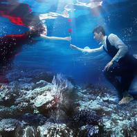 【幸福纪】水底世界,清凉一夏