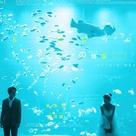 〖个性定制〗蓝色大海的传说