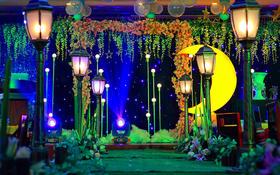 一生一世婚礼--月光倾城  灯光、灯柱婚礼路引、星空