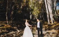 【婚礼摄影】迷恋银杏这样的金黄❤秋冬独有的风景