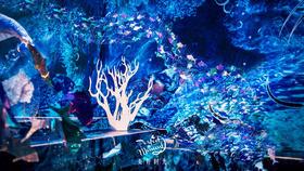 蓝色主题婚礼《大鱼海棠》