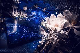 《The Starry Night》星空主题婚礼