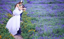 【大视觉摄影】浪漫花海——紫色薰衣草