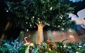 爱慕婚礼真实案例《森林》·小清新森系