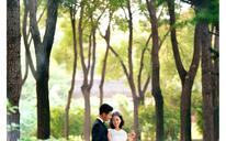【水晶之恋 · 春的绿意】·森系婚纱照