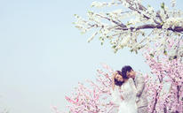 米兰coco——唯美森林婚纱照
