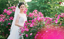 【青禾蒙娜丽莎】韩式草坪婚纱照