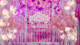【IDOI2018博彩娱乐网址大全策划】Cherry Blossom粉紫色唯美