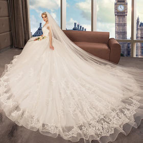 安吉莉娜婚礼殿堂拖尾V领相框婚纱礼服