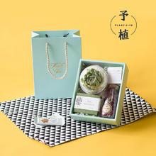 森系多肉植物喜糖婚礼创意高端伴手礼个性定制日式欧式小清新礼盒