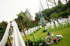 草坪婚礼/自助餐