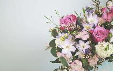 求婚什么花比较好 十种经典求婚花束一览