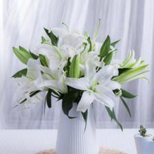 结婚纪念日到了,你的花送对了吗
