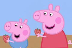 95年属猪女婚配表 95年女猪和啥属相婚配