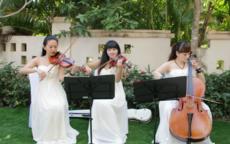 适合婚礼拉的小提琴曲