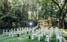 个性婚礼策划方案 别出心裁的婚礼流程