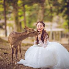 日本婚纱旅拍最佳时间