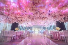 周新西路—樱花厅