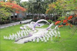 洲际花园草坪