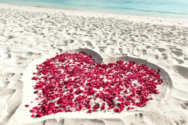 婚礼纪小编为大家整理了求婚时候可以说的浪漫告白词大全,以供参考.图片