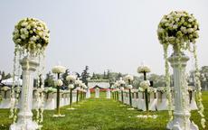 郑州草坪婚礼场地整理