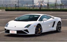 白色车可以做婚车吗