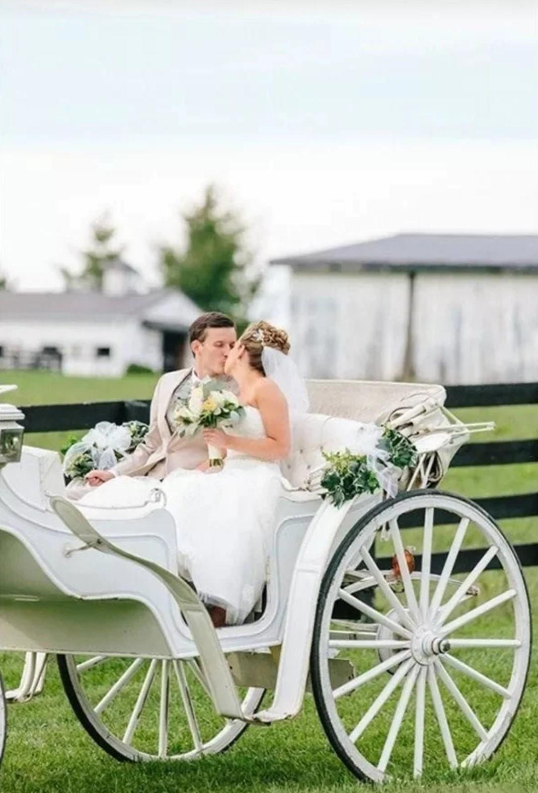 户外婚礼入场方式