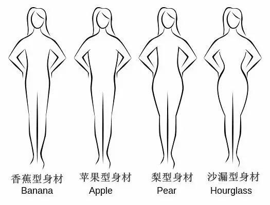 普通人身材类型