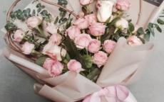 送女朋友什么花好 花都有什么寓意