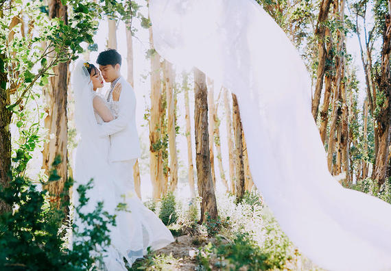 【文艺】羊驼+洱海+花海+苍山 大理旅拍婚纱