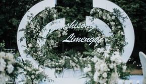 精致唯美户外草坪仪式婚礼