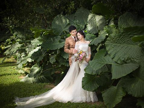 婚纱照清新_森系婚纱照图片小清新