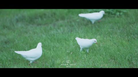 【畅拍霸都】精选外景婚纱照+领券立减3000元!