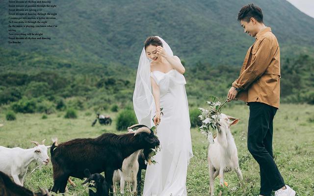 【琦琪】先生&女士 羊群牧场婚纱客照