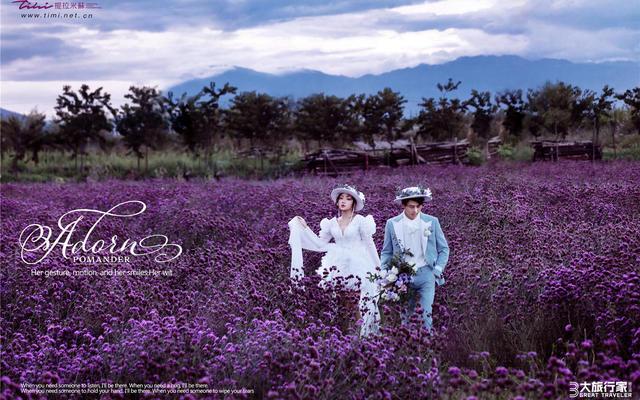 大旅行家·丽江站·样片欣赏【爱在花丛中】