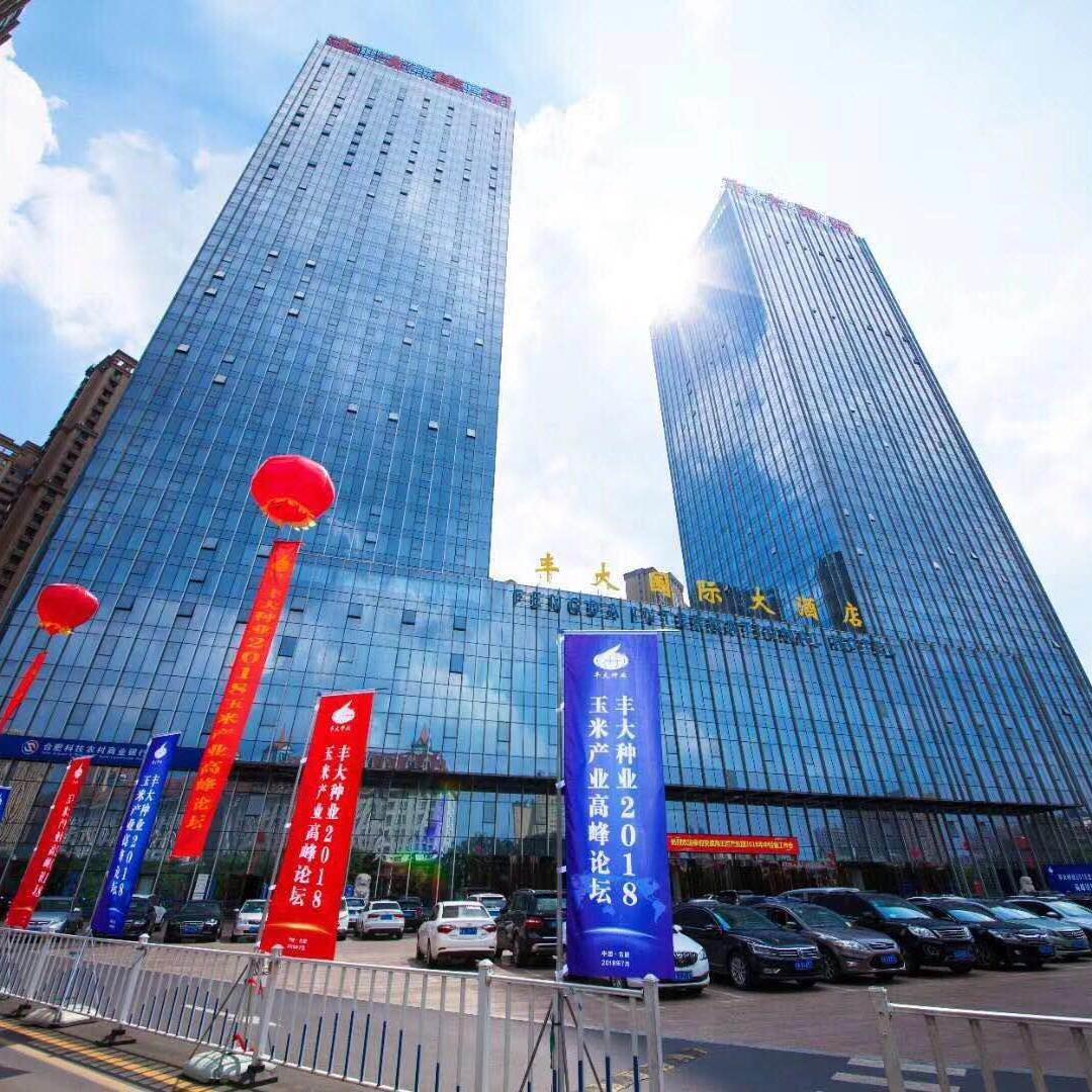 丰大国际酒店