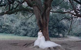 【屿】剪辑师 「婚礼快剪」