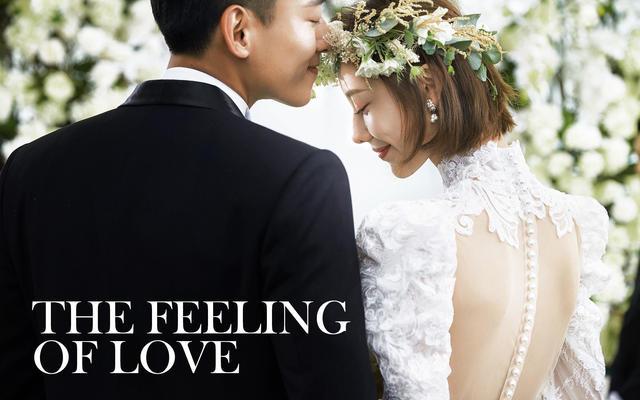 临场感《婚礼主义》系列/韩式/创意园区