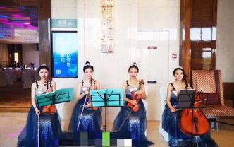 小提琴四重奏,迎宾演奏,草坪婚礼