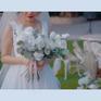 总监双机拍摄案例广州玫瑰园