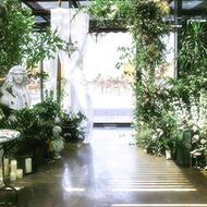 Mi.garden空中花园西餐厅