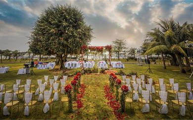 0001-红玫瑰婚礼 三亚草坪婚礼